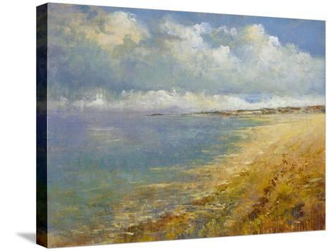 Coastal Wave- Deckard-Stretched Canvas Print