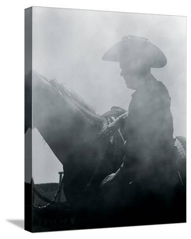 Rodeo II-Andrew Geiger-Stretched Canvas Print