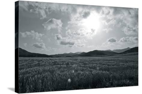 Whispering Grass-Mike Toy-Stretched Canvas Print