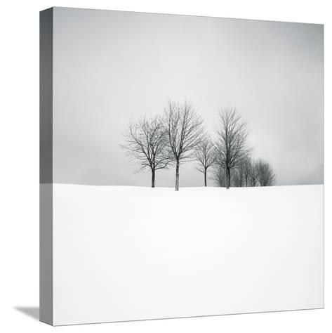 Wintertide-Hakan Strand-Stretched Canvas Print