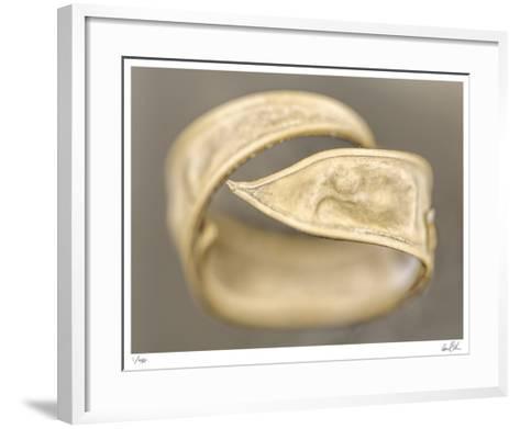 Ring-Daniel Sroka-Framed Art Print