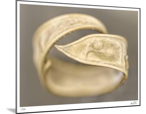 Ring-Daniel Sroka-Mounted Giclee Print
