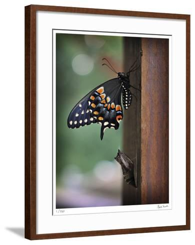 ReBirth-Michelle Wermuth-Framed Art Print