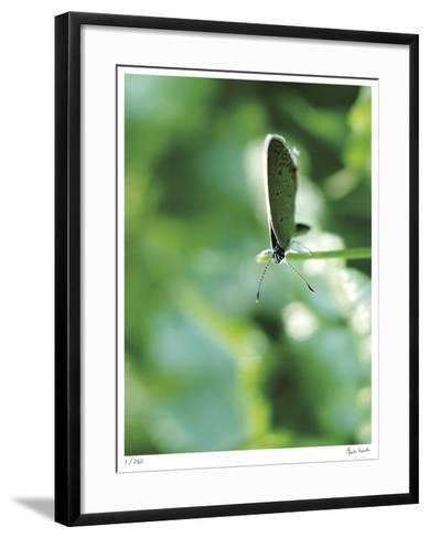Good Morning-Michelle Wermuth-Framed Art Print