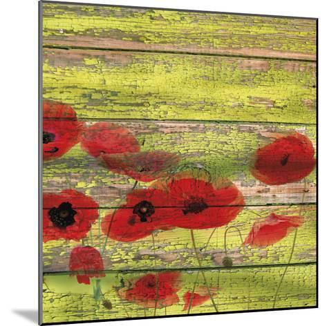 Red Poppies 1-Irena Orlov-Mounted Giclee Print
