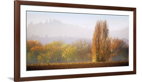 Vineyard Mist-Lance Kuehne-Framed Art Print