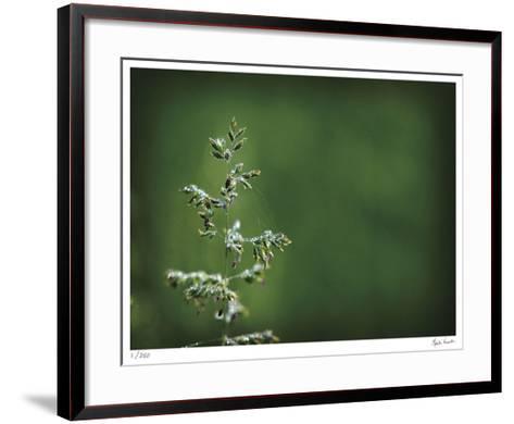 Sparkley-Michelle Wermuth-Framed Art Print