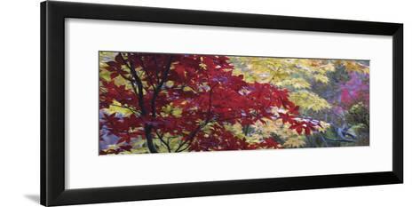 Maple Glade I-Bill Philip-Framed Art Print