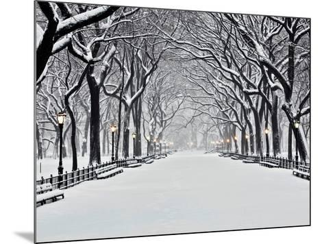 Central Park in Winter-Rudy Sulgan-Mounted Art Print