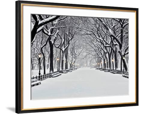 Central Park in Winter-Rudy Sulgan-Framed Art Print