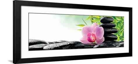 Spa Concept with Zen Stones and Orchid--Framed Art Print