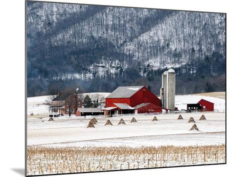 Winter Farm-Bill Coleman-Mounted Giclee Print