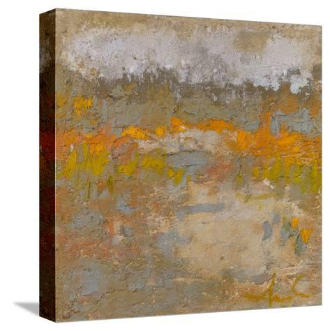 Affectionate Expressions-Amy Donaldson-Stretched Canvas Print