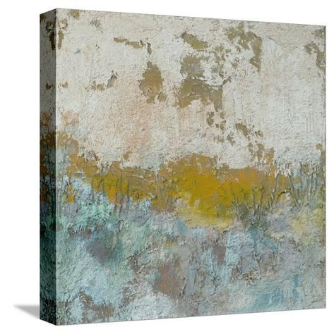 Viaje-Amy Donaldson-Stretched Canvas Print