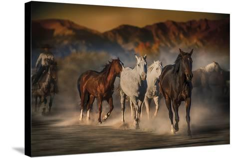 Mustangs on the Move-Bobbie Goodrich-Stretched Canvas Print