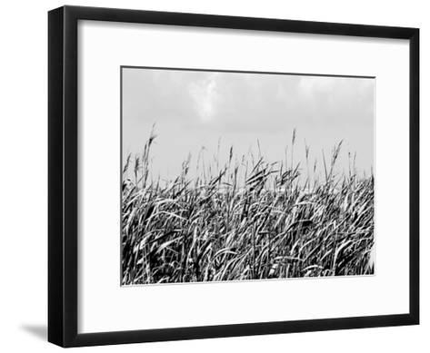 Dune Triptych I-Jeff Pica-Framed Art Print