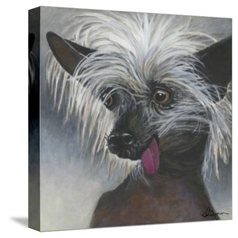 Dlynn's Dogs - Poe-Dlynn Roll-Stretched Canvas Print