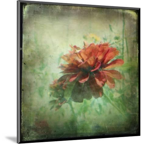 Dream in Pink XI-Jennifer Jorgensen-Mounted Art Print