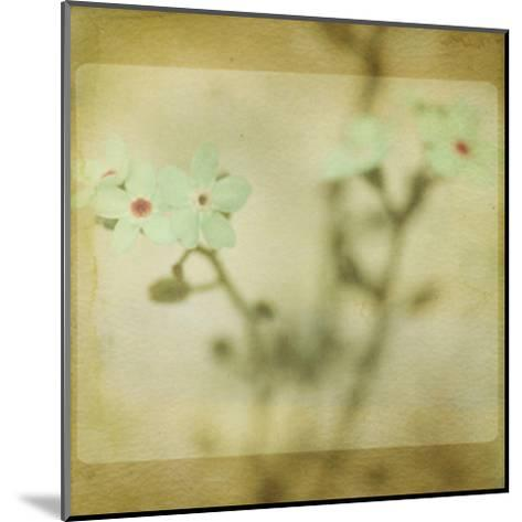 Pastel Paths XI-Jennifer Jorgensen-Mounted Art Print