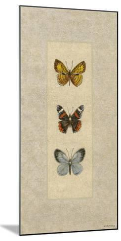 Butterfly Trio II-Wendy Russell-Mounted Giclee Print