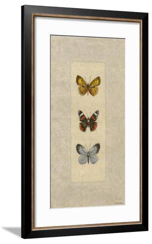 Butterfly Trio II-Wendy Russell-Framed Art Print