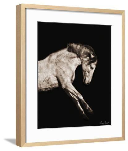 Horse Portrait IV-David Drost-Framed Art Print