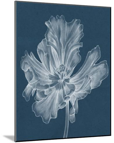 Monochrome Tulip II-Jennifer Goldberger-Mounted Giclee Print