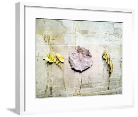 Herbarium III-Ingrid Blixt-Framed Art Print