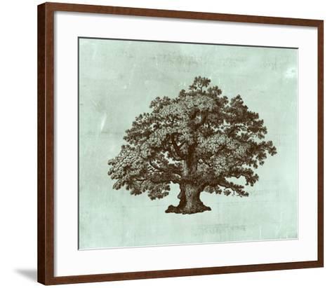 Spa Tree III-Vision Studio-Framed Art Print