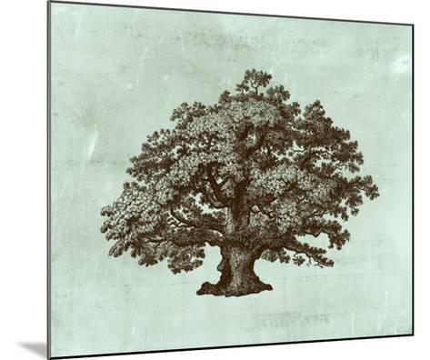 Spa Tree III-Vision Studio-Mounted Giclee Print