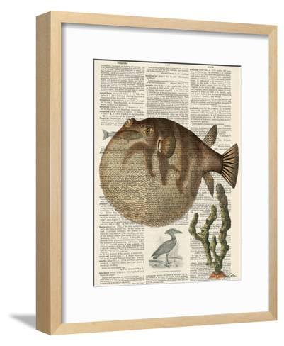 Belly Fish 2-Tina Carlson-Framed Art Print