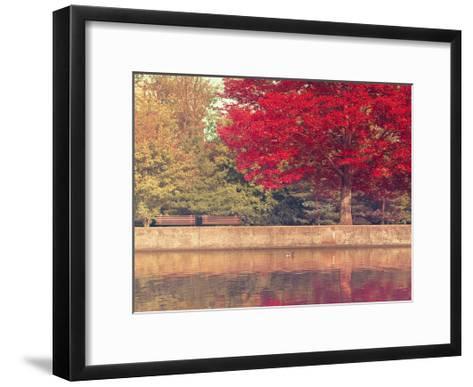 The Duck-Tracey Telik-Framed Art Print