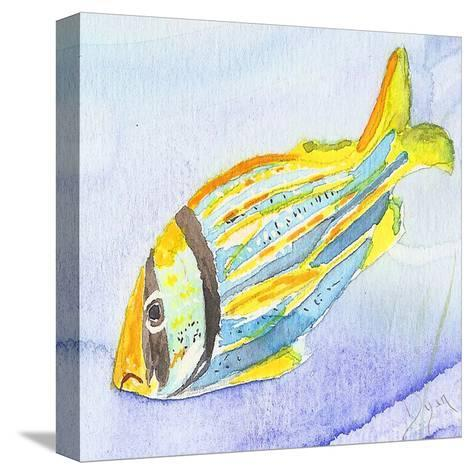 Tropical Fishy III-Beverly Dyer-Stretched Canvas Print