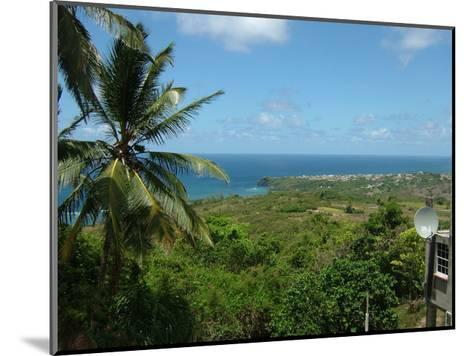 Grenada 15-Sheldon Lewis-Mounted Art Print