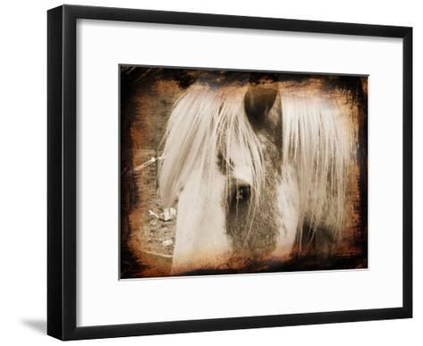 Sepia Horse-Suzanne Foschino-Framed Art Print
