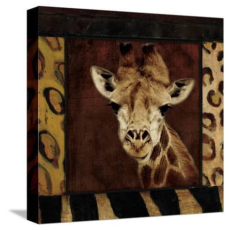 Giraffe-Jace Grey-Stretched Canvas Print