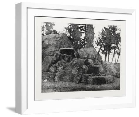 The White Chicken-Elisse Pogofsky-Harris-Framed Art Print
