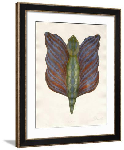 Mr Papillon III-Ben Banay-Framed Art Print