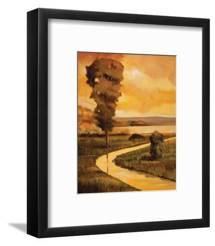 Summer Stream-Judith D'Agostino-Framed Art Print