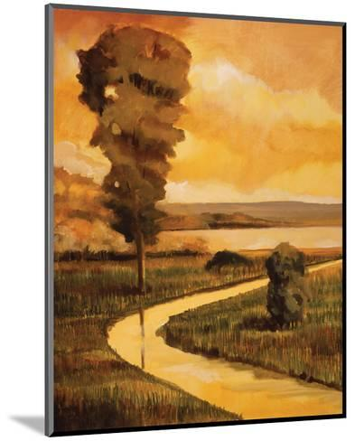Summer Stream-Judith D'Agostino-Mounted Art Print