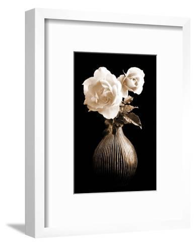 Lighted White Roses-Christine Zalewski-Framed Art Print
