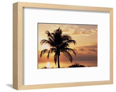 Sanibel Sunrise-Danny Burk-Framed Art Print