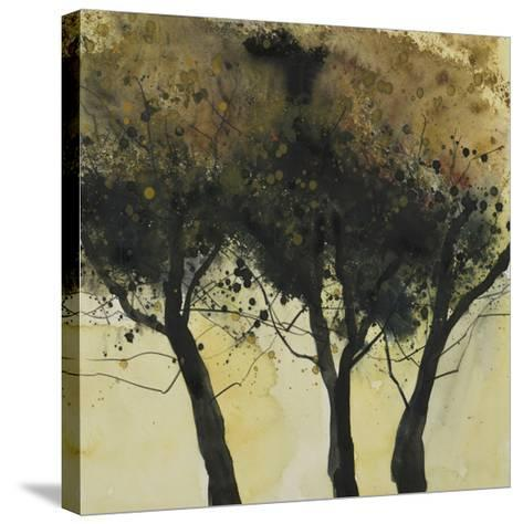 Seasonal Trees III-Susan Brown-Stretched Canvas Print