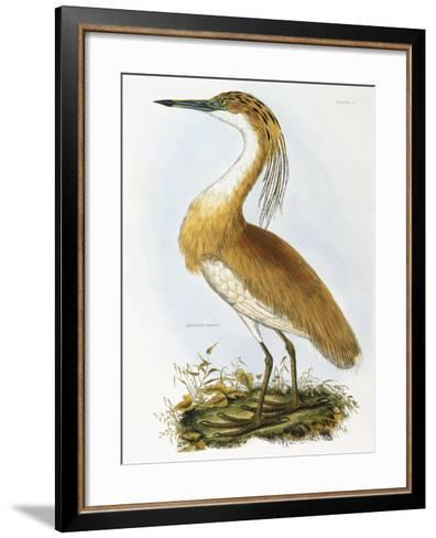 Squated Heron-Prideaux Selby-Framed Art Print