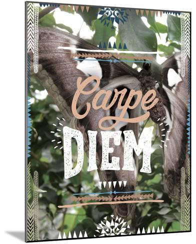 Carpe Diem-Joana Joubert-Mounted Giclee Print