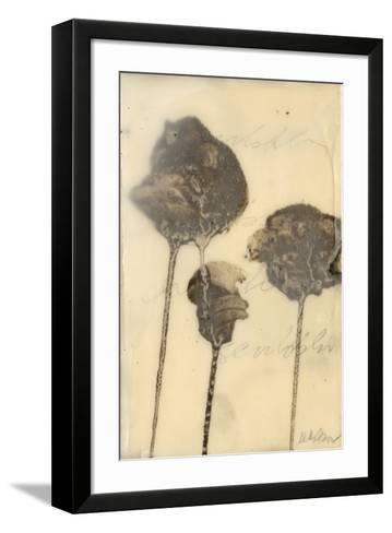 Lutare IV-Kelly Rogers-Framed Art Print