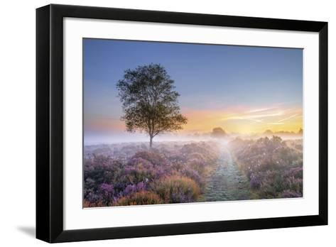 Heath at Dawn-Steve Docwra-Framed Art Print