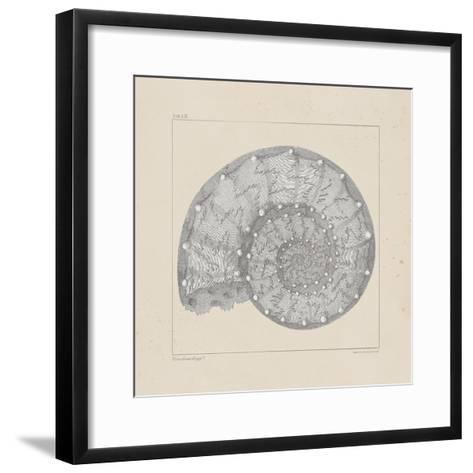 Jurassic II-A^ Poiteau-Framed Art Print