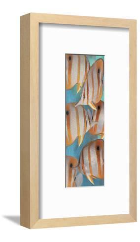 Copper Banded Butterfly-Melinda Bradshaw-Framed Art Print