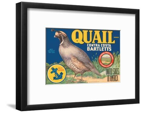 Quail Brand Contra Costa Bartletts--Framed Art Print